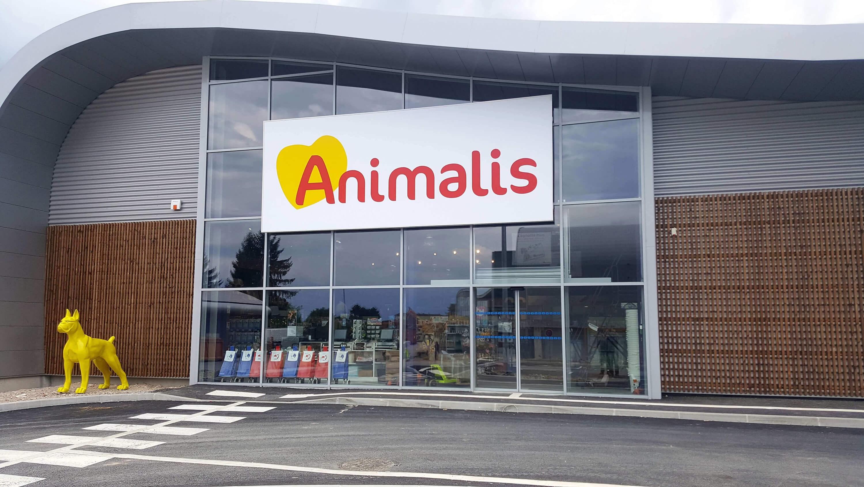 La stratégie SEO d'Animalis